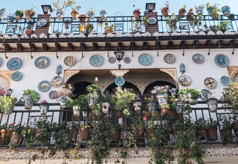 美しくて美味しい街スペイン・グラナダ